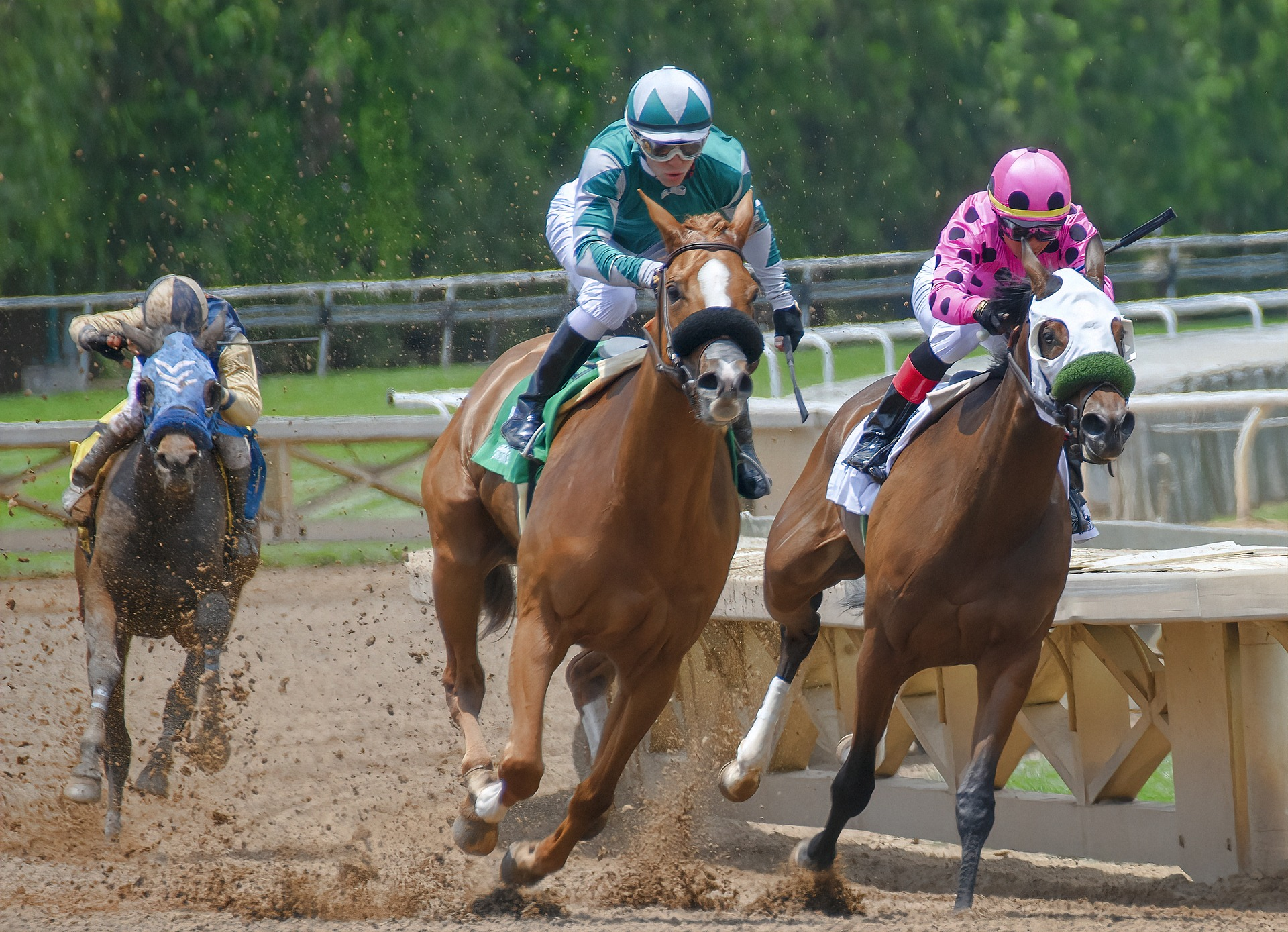 Off track betting horse racing we love betting nfl picks